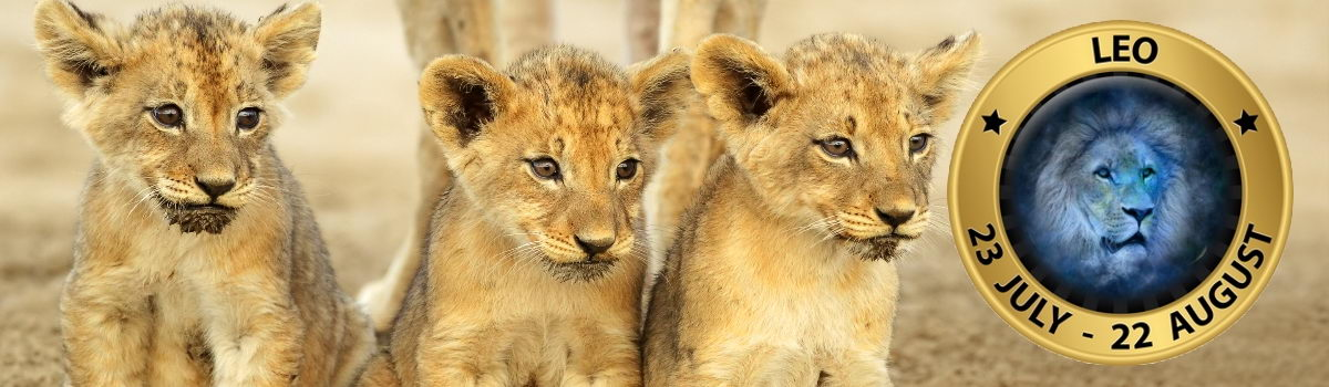 Lion_Sign_3